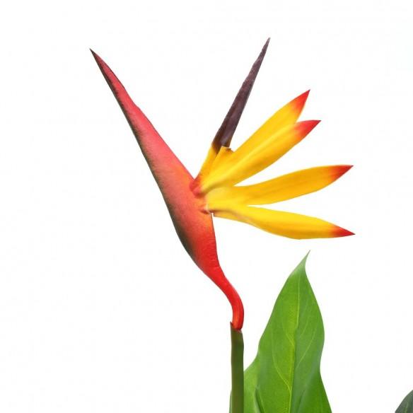 Plant? artificial? Strelitzia Reginae Pas?rea paradisului 55 cm